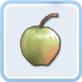 まだ熟していないリンゴ
