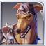 聖域の番犬アイコン