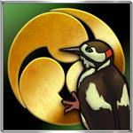 啄木鳥戦法のアイコン