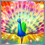 孔雀の舞のアイコン