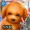 [天使の聖犬]クリスティナ
