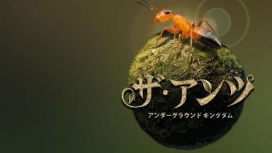 アリの習性をリアルに表現!