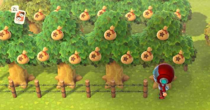 植え の 森 あつ 替え 木