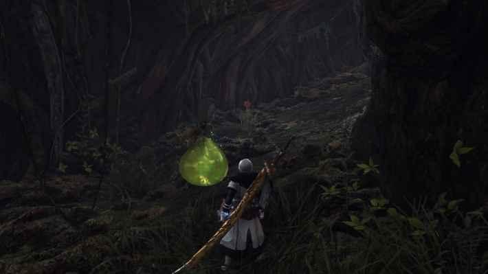 古代樹タカラ10-1