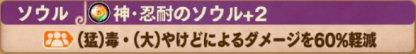 神忍耐のソウル+2