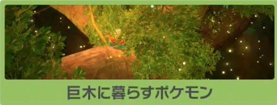 巨木に暮らすポケモンのバナー