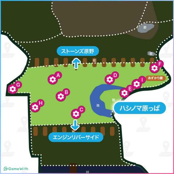 ハシノマ原っぱのマップ