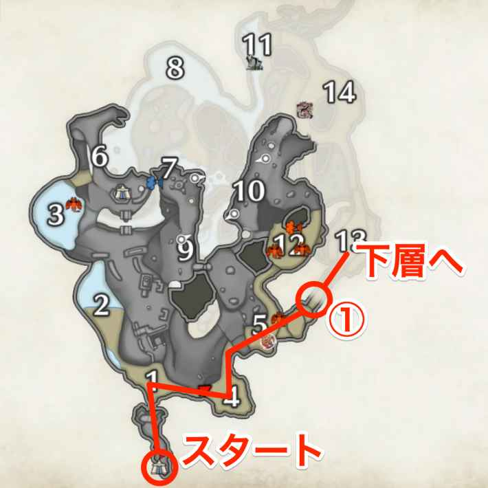 溶岩洞での出現場所(上層)