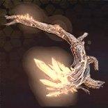 神木の霊石炭