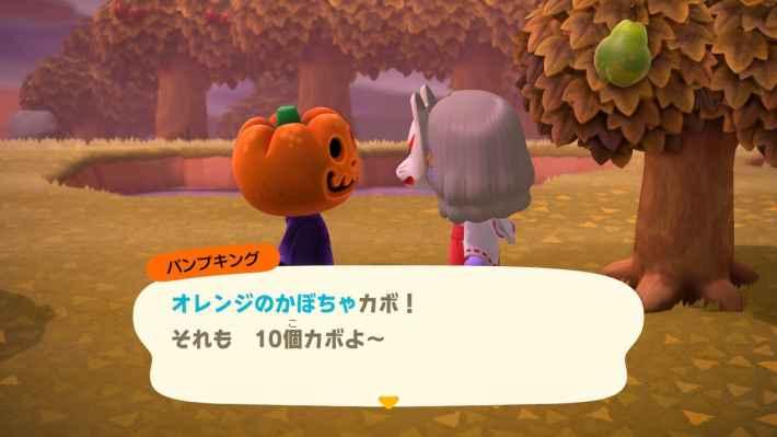 かぼちゃ貰う
