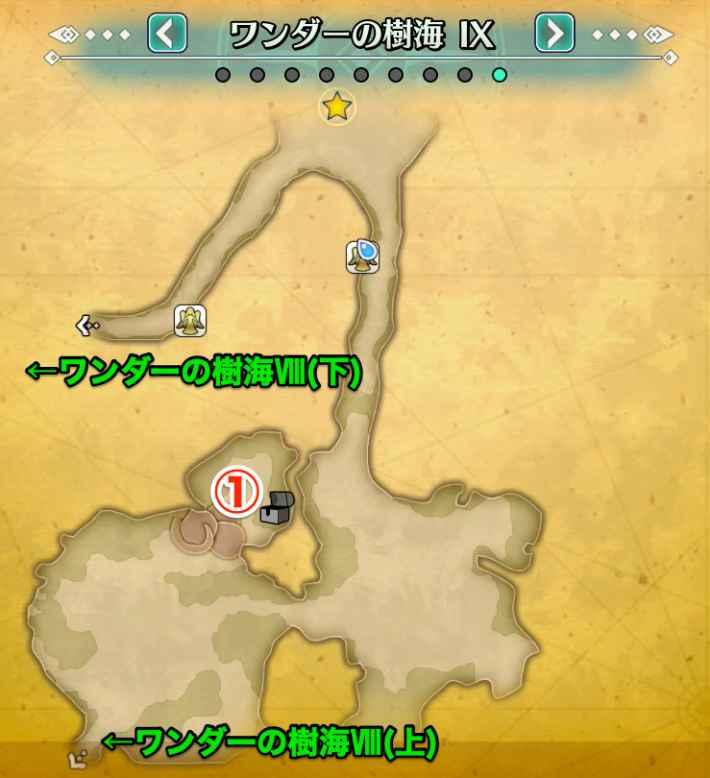 ワンダーの樹海9
