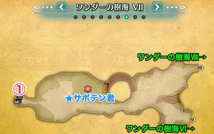 ワンダーの樹海7