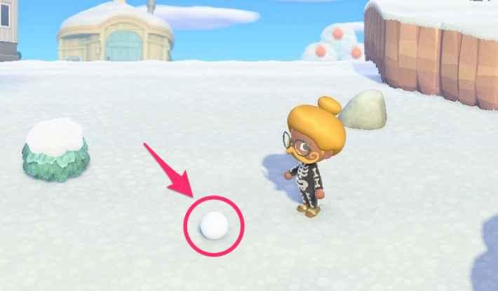 雪玉を見つける