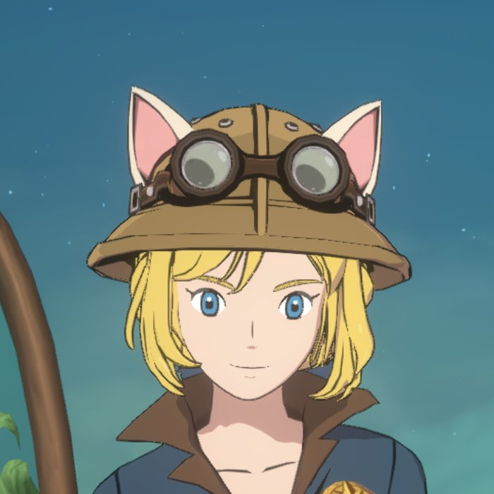 ウィッチの探検家の帽子画像