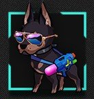 ビーチパトロール犬