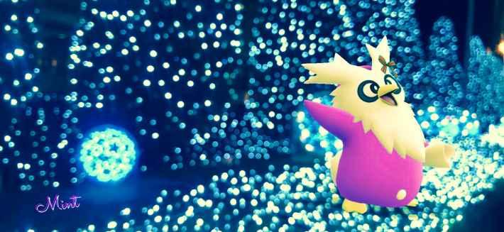 星空プレゼント