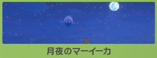 月夜のマーイーカのバナー