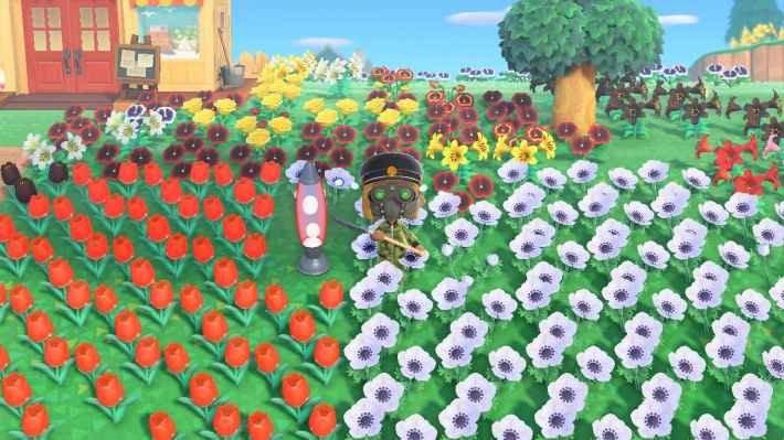 レアな花を交配させる