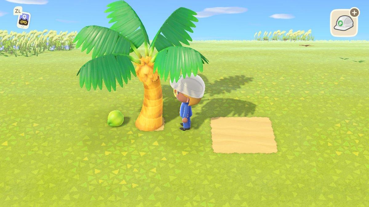 果物 植え 森 あつ の 方 木